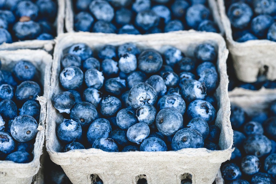 clinton-bailey-farmers-flea-market-blueberries